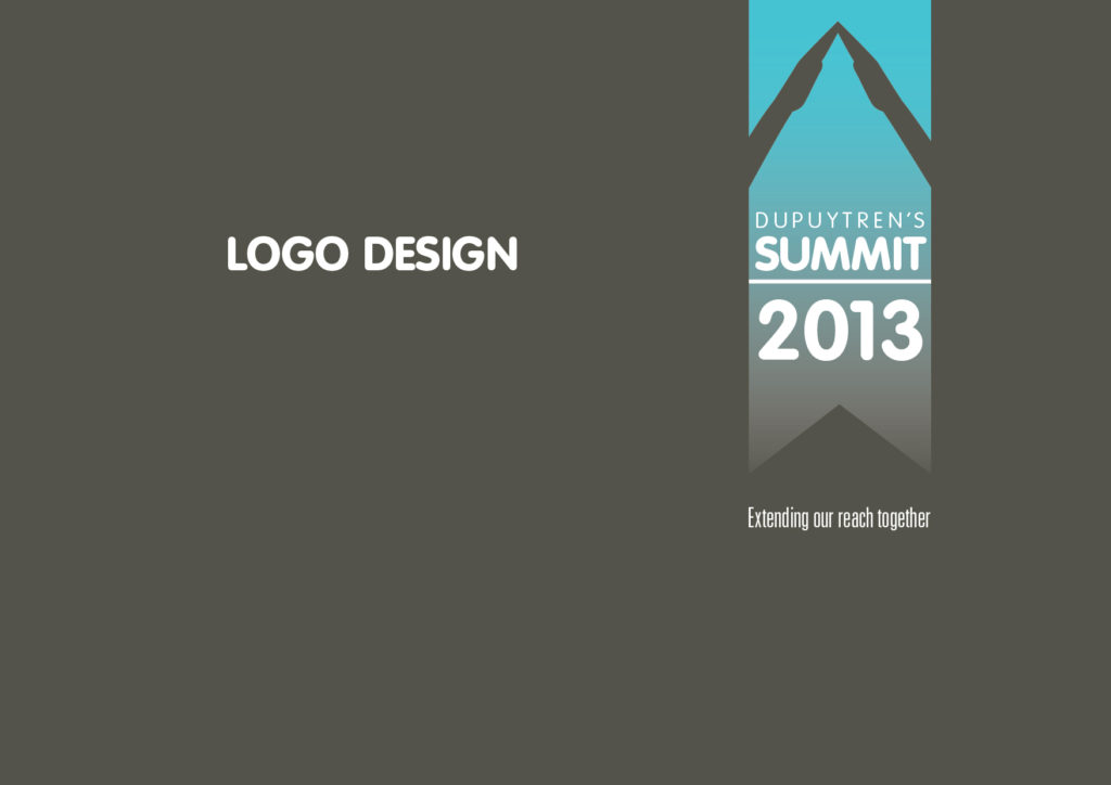 DS13 logo design