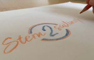Stern2Sailing Logo deign and branding | Scream Blue Murder